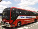 the greyhound bus to brisbane