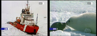 seal hunters stuck in pack ice