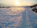 winter sunset || photo details: 2002-01-01, Sony Cybershot DSC-F505. keywords: snow, sunset, orange