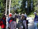 ornithologische exkursion || foto details: 2005-06-11, kaunerberg / kaunertal valley / austria, Sony Cybershot DSC-F717.
