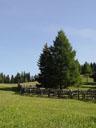idyllische berglandschaft || foto details: 2005-06-11, kaunerberg / kaunertal valley / austria, Sony Cybershot DSC-F717.