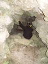 toni steigt in die höhle hinunter || foto details: 2005-06-11, kaunerberg / kaunertal valley / austria, Sony Cybershot DSC-F717.