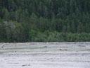 fluvial landscape. 2005-07-02, Sony Cybershot DSC-F717.