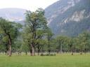 ahornboden || foto details: 2005-08-31, eng / risstal valley / austria, Sony Cybershot DSC-F717.