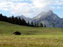 pasture scenery