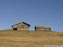 alpine barnyard