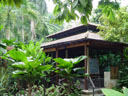 a restaurant in the botanic gardens