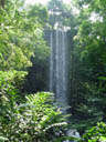 jurong falls - the tallest man-made waterfall in the world (100ft)