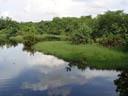 sungei buloh wetland reserve. 2005-11-13, Sony Cybershot DSC-F717. keywords: reservat