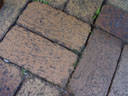 brick floor. 2005-11-16, Sony Cybershot DSC-F717. keywords: brick floor