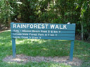 mission beach rainforest walk