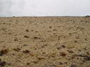 mars-like landscape. 2005-12-01, Sony Cybershot DSC-F717.