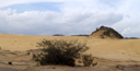 panorama: sand dune, near 'the spring'