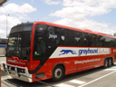 the greyhound bus to brisbane