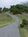 on our way to akaroa head: the road kept getting narrower and windier. 2005-12-11, Sony Cybershot DSC-F717.