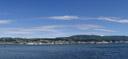 panorama: dunedin
