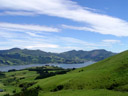 otago harbour. 2005-12-30, Sony Cybershot DSC-F717. keywords: rolling hills, green, grüne hügellandschaft, grün, otago peninsula, otago halbinsel