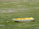 aground. 2005-12-30, Sony Cybershot DSC-F717. keywords: boat, yellow, green, algae