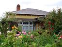 flowering garden. 2006-01-01, Sony Cybershot DSC-F717.