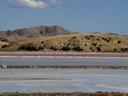 lake grassmere. 2006-01-02, Sony Cybershot DSC-F717.