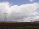strommast-wald || foto details: 2006-01-04, palmerston, new zealand, Sony Cybershot DSC-F717.