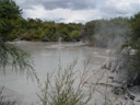 mudpools, about 10 minutes from wai-o-tapu. 2006-01-05, Sony Cybershot DSC-F717.