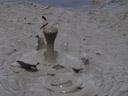 bubbling mud. 2006-01-05, Sony Cybershot DSC-F717.