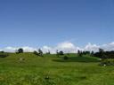hills like hobbiton