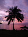 fijian sunset. 2006-01-13, Sony DSC-F717. keywords: fidschi, pink sunset, violet sunset, orange sunset, polynesian sunset
