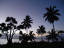 susie's plantation. 2006-01-13, Sony DSC-F717.