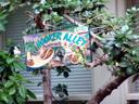 hooker alley (what??) on nob hill. 2006-01-26, Sony DSC-F717.