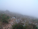 it was really foggy on the plateau