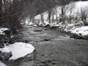 the perfect weather for standing in a stream. 2007-02-13, Sony DSC-P93.