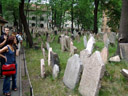 the jewish cemetary, one of the most popular tourist attractions in prague. 2007-05-27, Sony F828. keywords: josefov