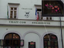 crazy cow steakhouse - with a drawing of a drooling BSE cow. 2007-05-27, Sony F828.