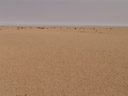 typical view of the central namib desert. 2007-09-03, Sony F828.