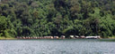 panorama: tonetuey floating bamboo huts. 2008-08-31, Sony F828. keywords: bamboo rafthouse, raft houses