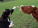 cindy causes massive bovine tongue action ;)