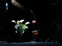 stage scene: calla lillies and a cello