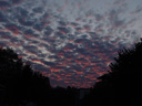 cirrocumulus sunset