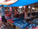tomohon market: fresh fish. even math had to duck with these canvasses