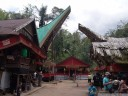 the funeral site (torajan funeral ceremony near buntao)
