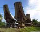 tongkonan (traditional torajan) rice storage buildings. the more rice fields you own, the more of them you have, the richer your family is. (near buntao, sulawesi)