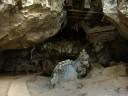 panorama: torajan cave grave