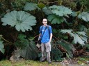 me, next to the umbrella of the poor (gunnera insignes)