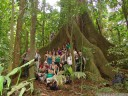 group photo at a giant kapok tree (ceiba pentandra), parque nacional arenal