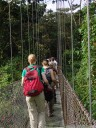 arenal hanging bridges through the tropical rainforest