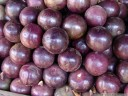 tropical fruit: star apples (chrysophyllum cainito)