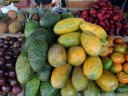 tropical fruit: star apples (chrysophyllum cainito), soursop (annona muricata), papayas (carica papaya), malay apples (syzygium malaccense) and mandarins (citrus reticul