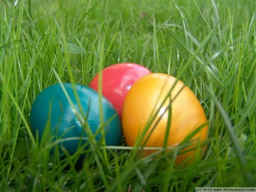 easter eggs in spring grass
